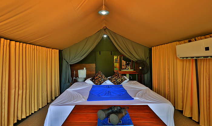 Yala Safari Camp - Tented Safari Camping in Yala - Yala Luxury Tented Safari Camps - Leopards Safari Camps - Tented Safari Leopards Camp  in Yala - Yala Leopards Trails - Leopards Safari Trails in Yala - Yala Leopard Safari Camping - Luxury Tented Camping in Yala - Yala Leopards Safaris - Tented Safari Camps in Yala - Ruhunu Safari Camp Yala - Yala Leopards Camping - Leopards Trails in Yala - Yala Safari Camping Tours