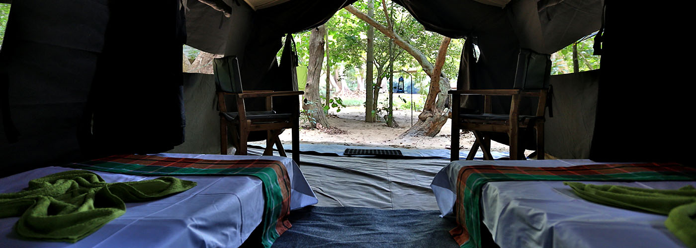 Kumana Bird Watching Safari Camp | Bird Watching and Tented
