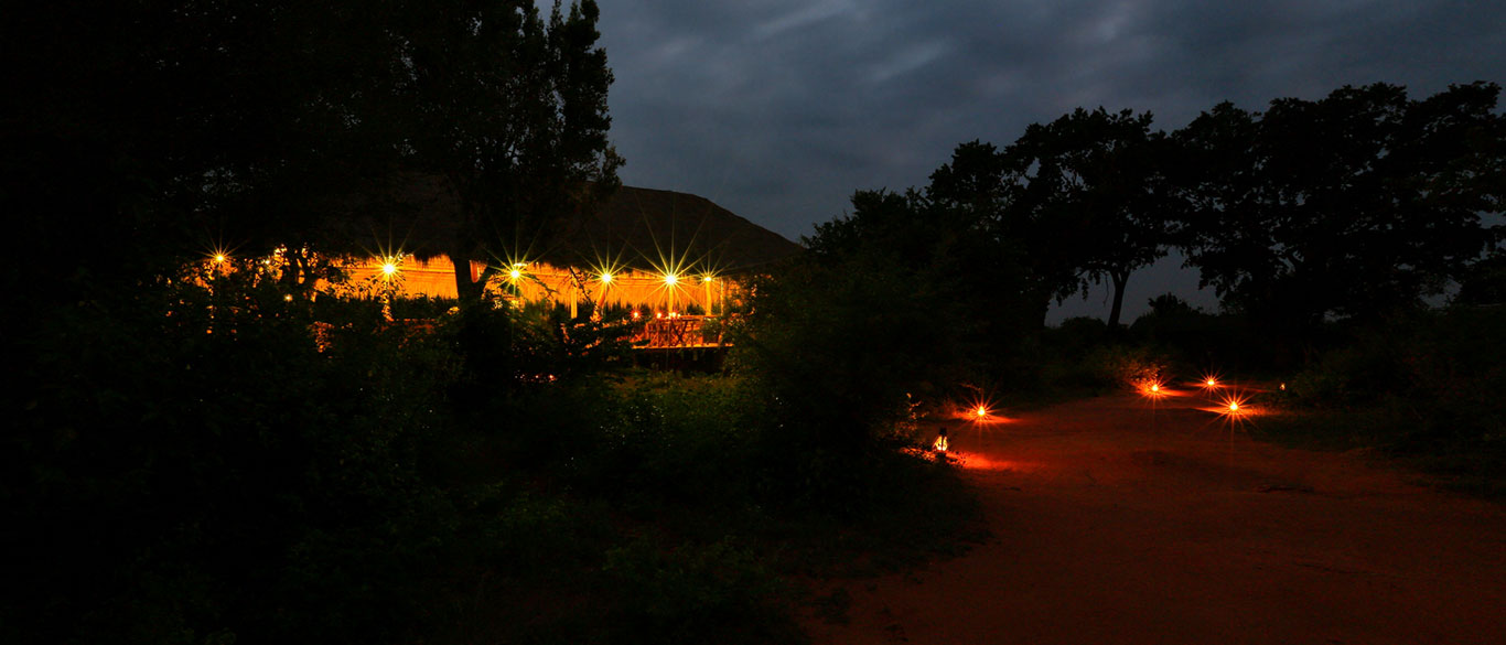 Leopard Safari Camp in Yala | Yala Leopard Safari Camp | Yala Safari Camping | Leopard Safari Camping in Yala